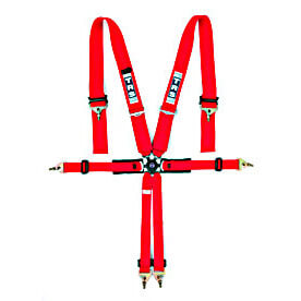 FIA Motorsport Harnesses